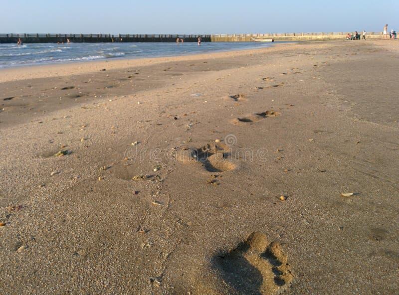 Étapes de sable photo stock