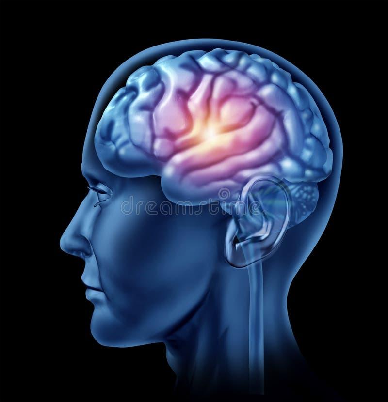 Étincelle d'intelligen de cortex de lobes de tête de cerveau de génie image libre de droits