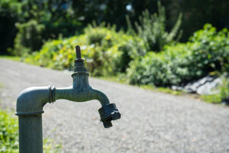 Étiquette de conduite d'eau devant le jardin en été images stock