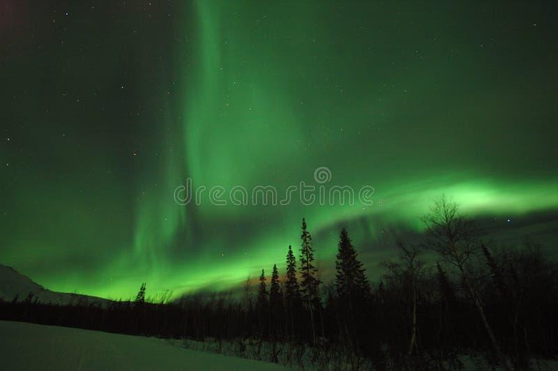 Étoile polaire de l'aurore photos stock