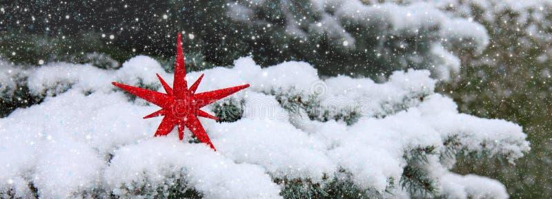Étoile rouge de Noël au-dessus de neige Fond de l'hiver photographie stock