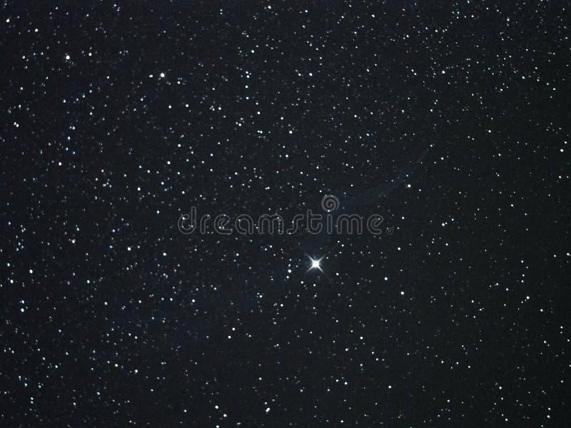 Étoiles de ciel nocturne, nébuleuse de constellation de cygnus images libres de droits