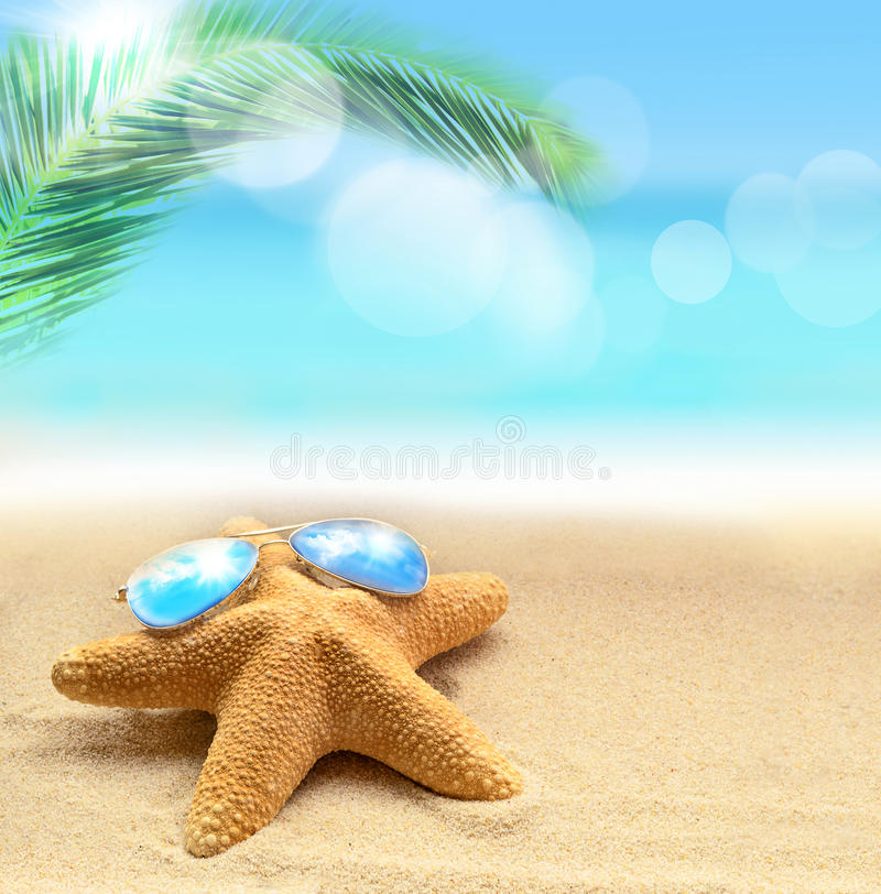 étoiles de mer dans des lunettes de soleil sur la plage sablonneuse et la paume photo stock