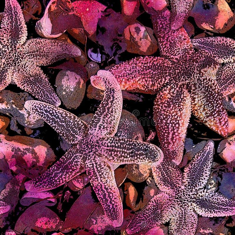 Étoiles de mer et Shell Print de plage illustration libre de droits