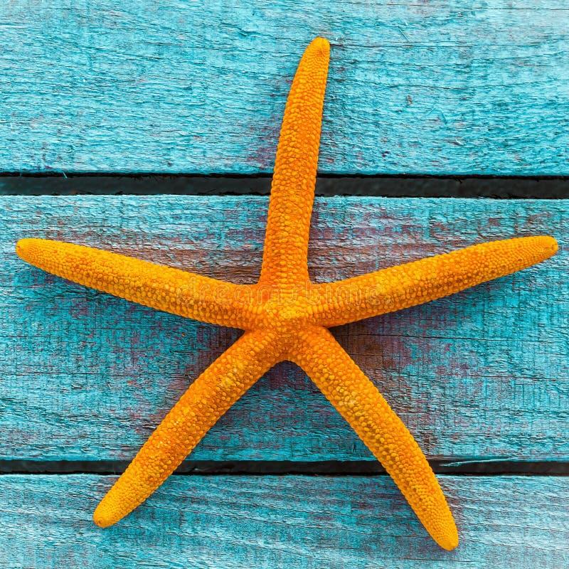 Étoiles de mer oranges sur les panneaux en bois de turquoise photo libre de droits