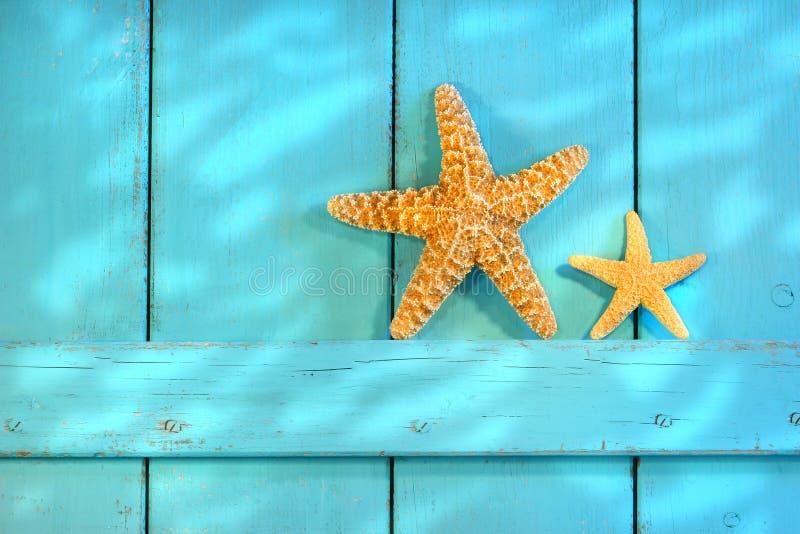 Étoiles de mer sur une vieille trappe rustique image libre de droits