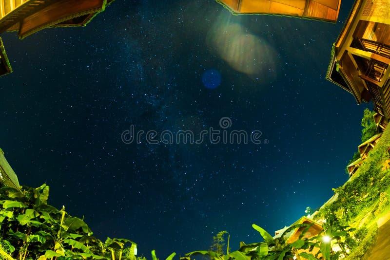 Étoiles en ciel nocturne au-dessus de manière laiteuse de maison et d'arbre illustration stock