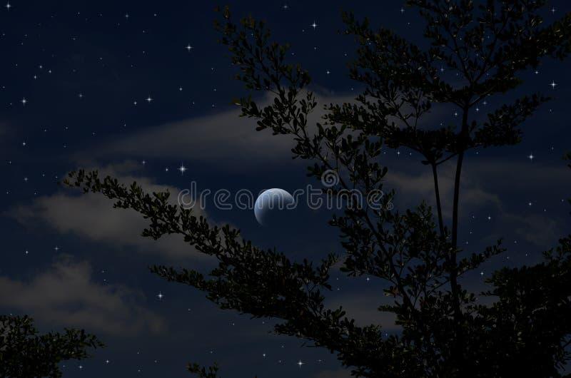 Étoiles lumineuses en ciel bleu de nuit de affaiblissement de lune image stock