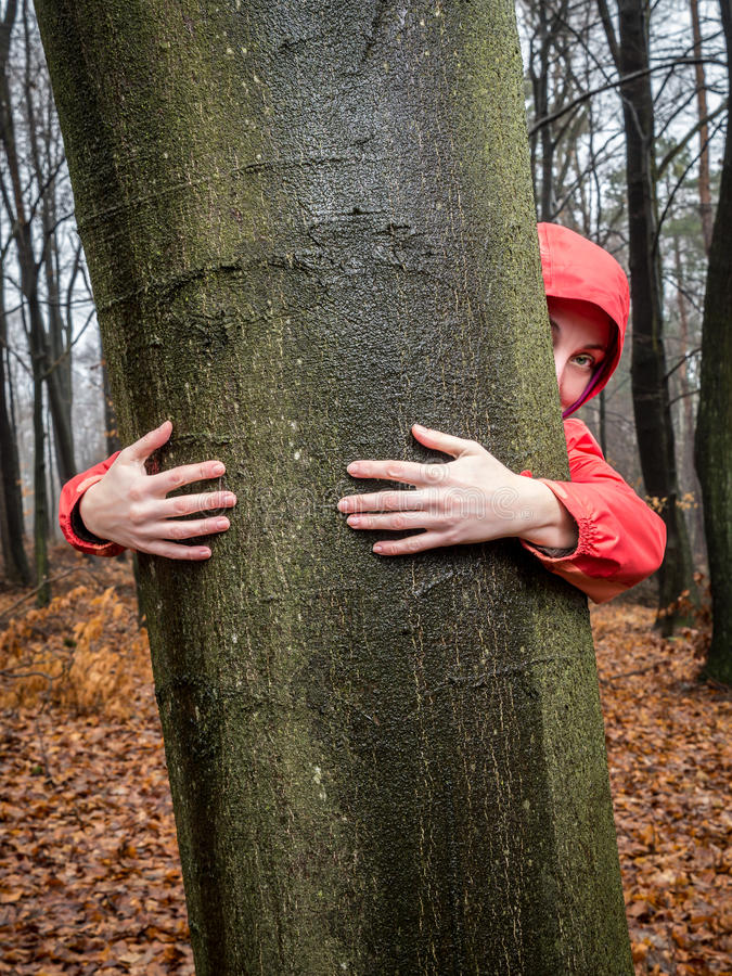 Étreignez un arbre image libre de droits