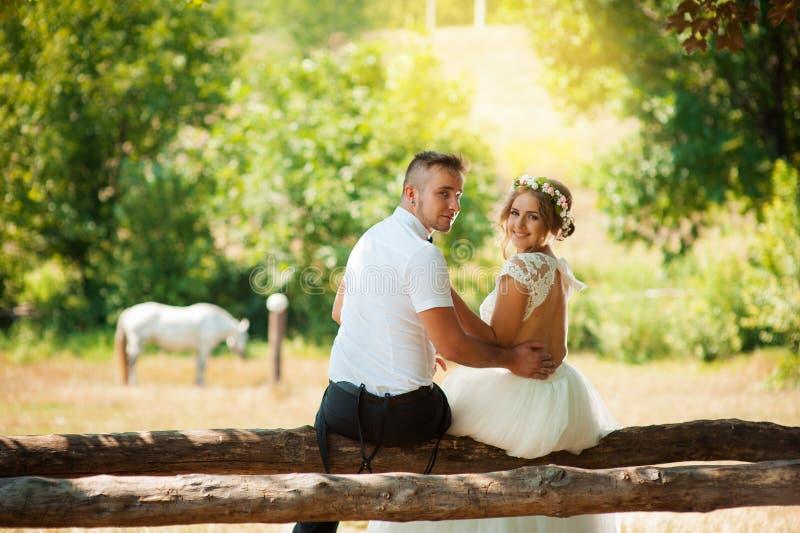 Étreinte de nouveaux mariés se reposant derrière un cheval photographie stock libre de droits