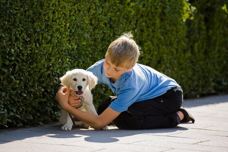 Étreinte et amour d'un jeune garçon à un petit, très jeune golden retriever de chiot extérieur image stock