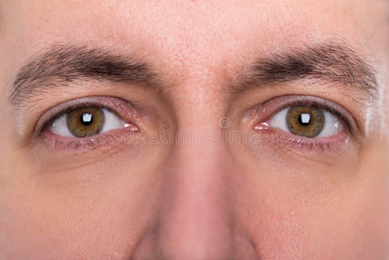Étroitement, yeux et sourcils d'un homme photos stock