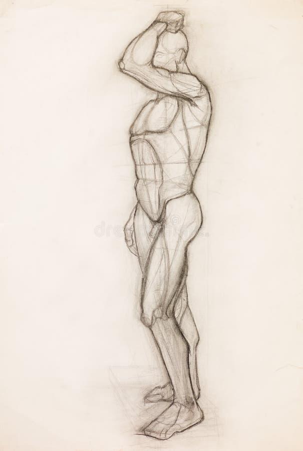 Étude d'anatomie de corps humain illustration de vecteur