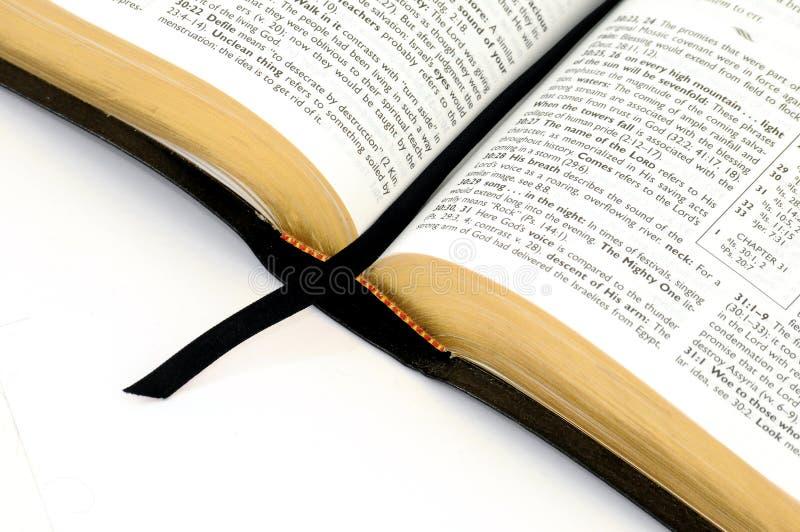 Étude de bible photo stock
