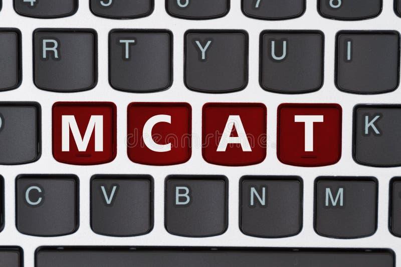 Étude pour votre MCAT en ligne photographie stock libre de droits