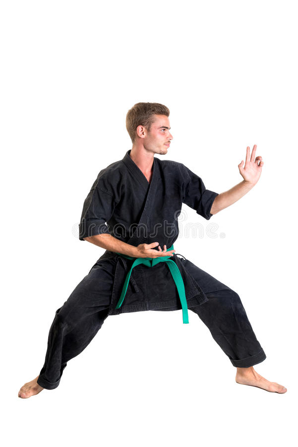 Étudiant d'arts martiaux images stock