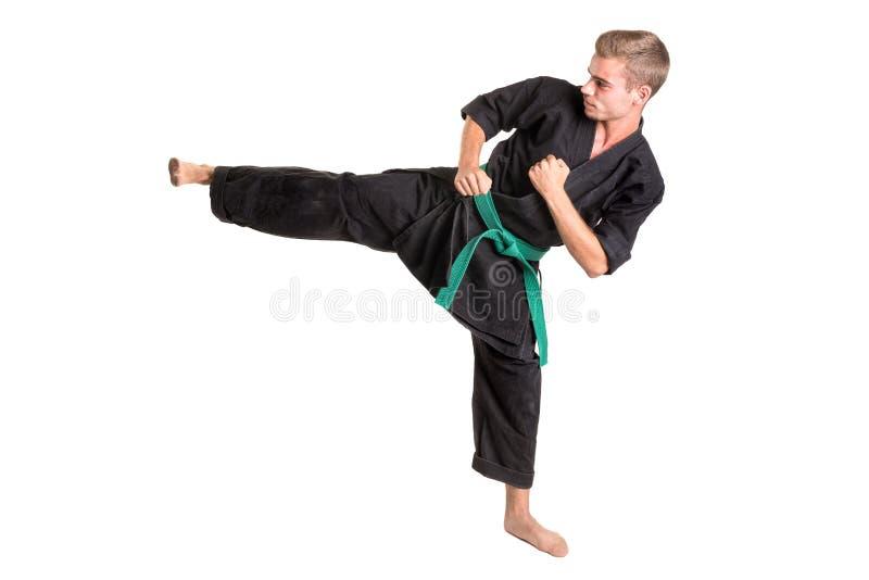 Étudiant d'arts martiaux photo libre de droits