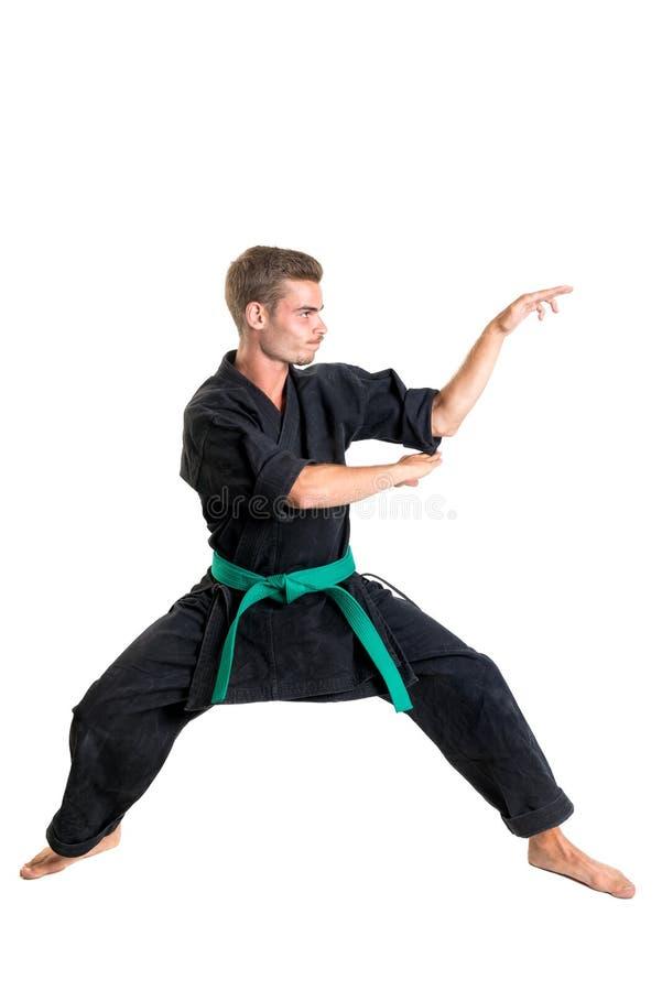 Étudiant d'arts martiaux images libres de droits