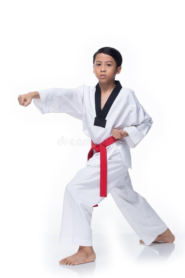 Étudiant rouge principal du Taekwondo de ceinture images stock