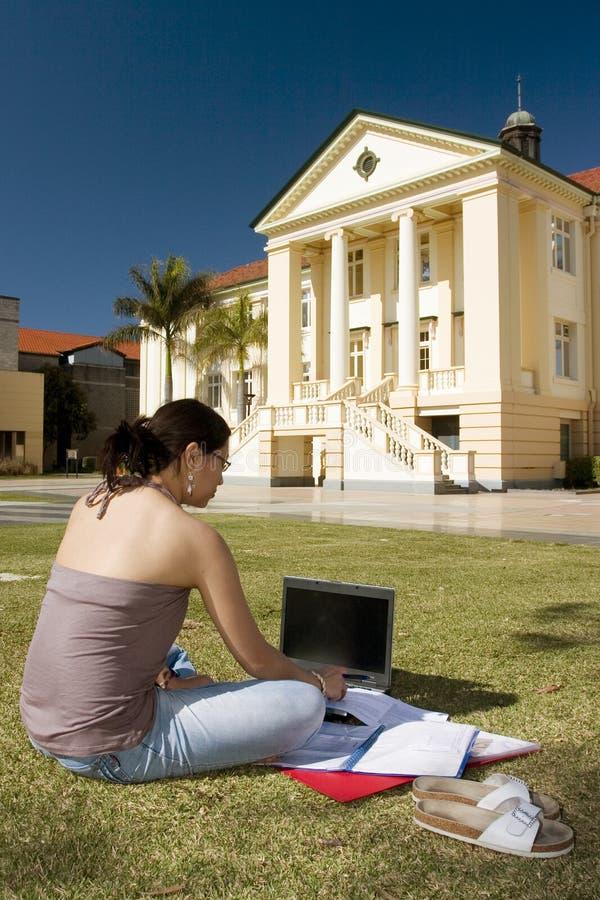 Étudiant universitaire travaillant à l'extérieur images libres de droits