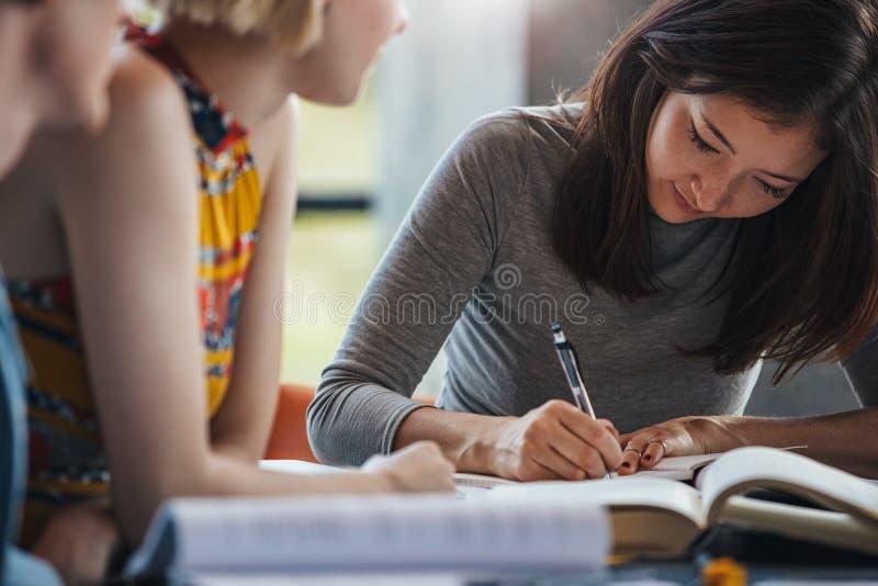 Étudiants à la bibliothèque préparant la tâche d'école image libre de droits