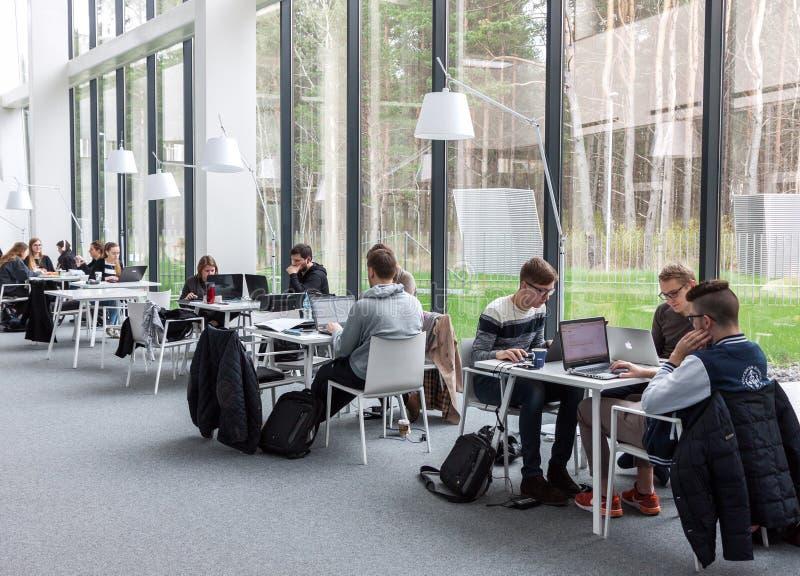 Étudiants étudiant à la bibliothèque image libre de droits