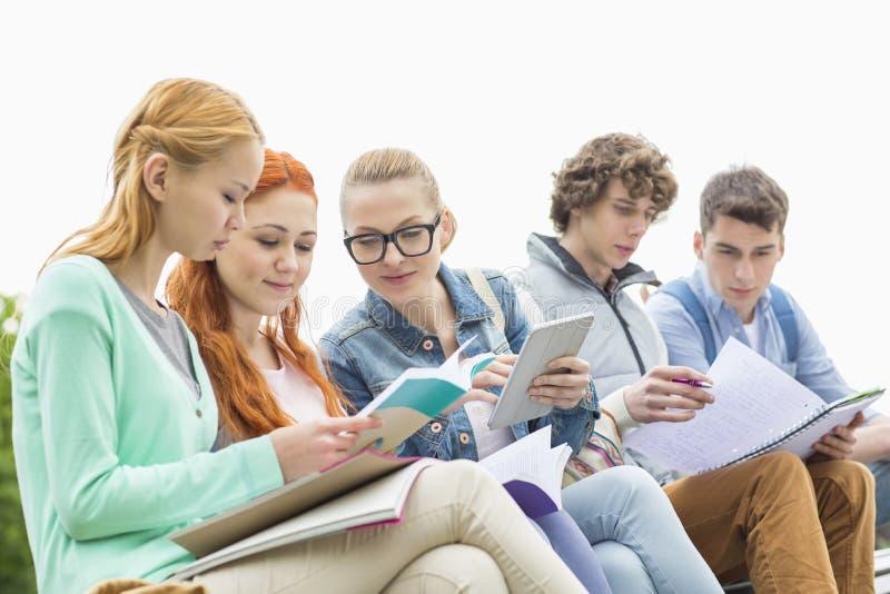Étudiants étudiant ensemble en parc image stock