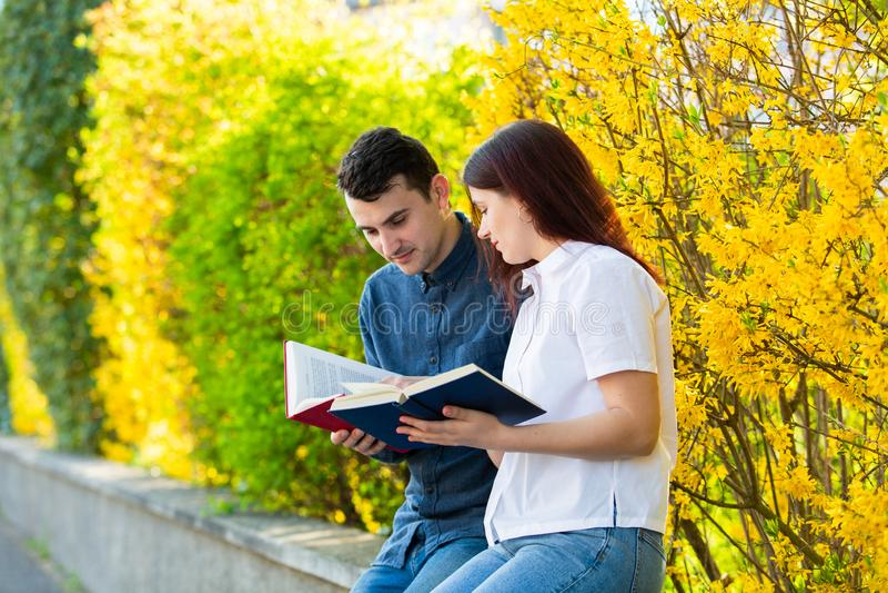 Étudiants apprenant pour l'examen photo libre de droits