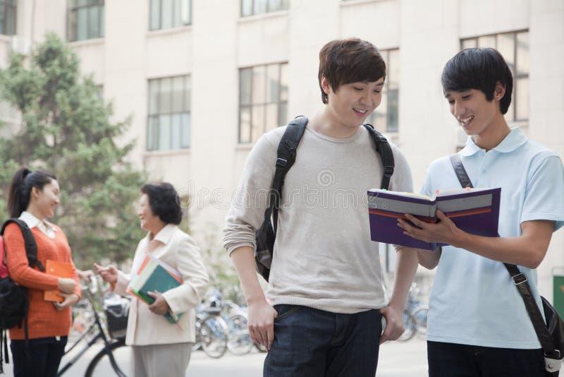 Étudiants discutant et regardant le livre, un autre étudiant parlant avec le professeur sur le fond photos libres de droits