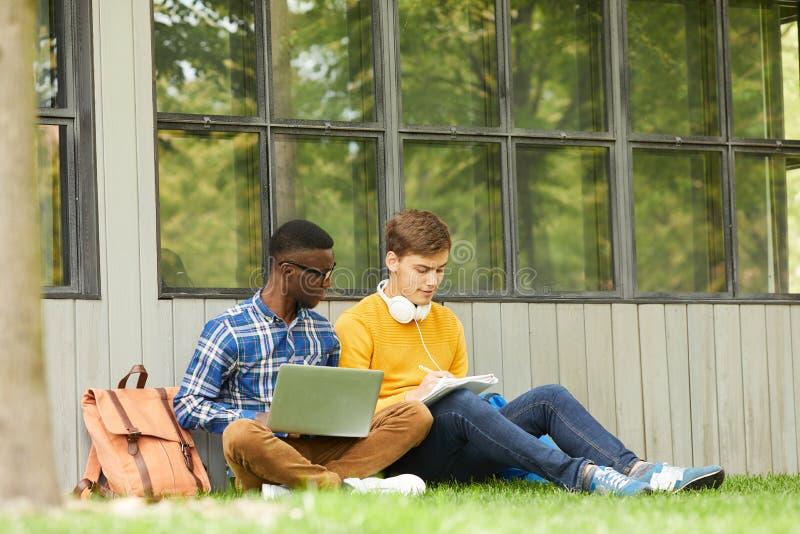 Étudiants faisant le travail dans le campus images libres de droits