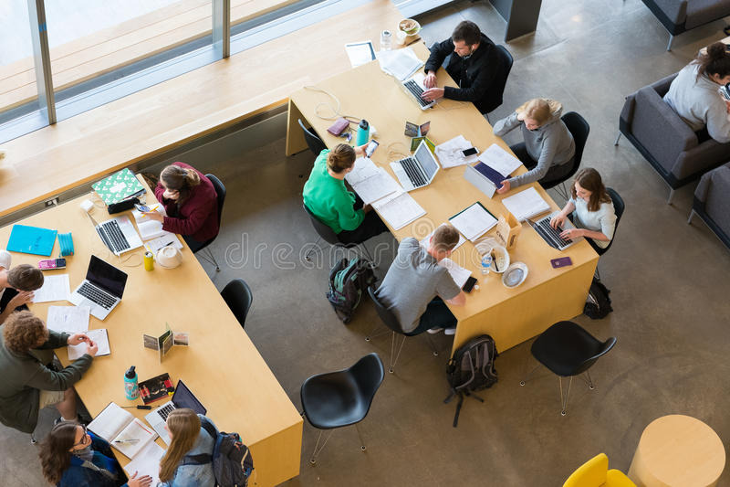 Étudiants universitaires étudiant ensemble image stock