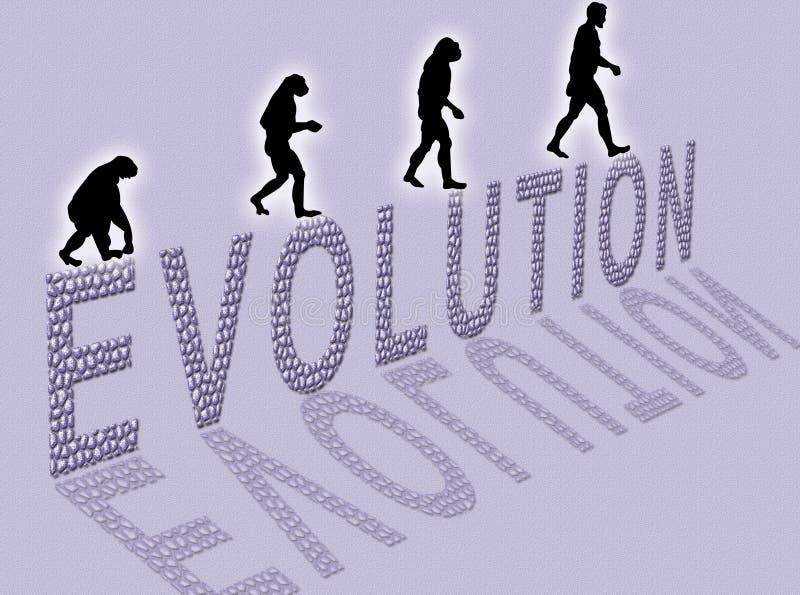 Évolution illustration de vecteur