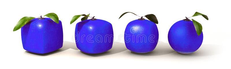 Évolution citrique bleue de fruit illustration de vecteur