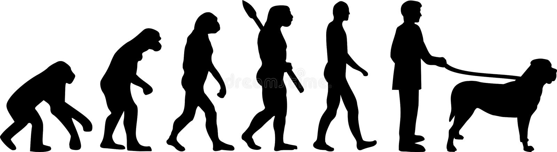 Évolution darwin de mastiff illustration de vecteur