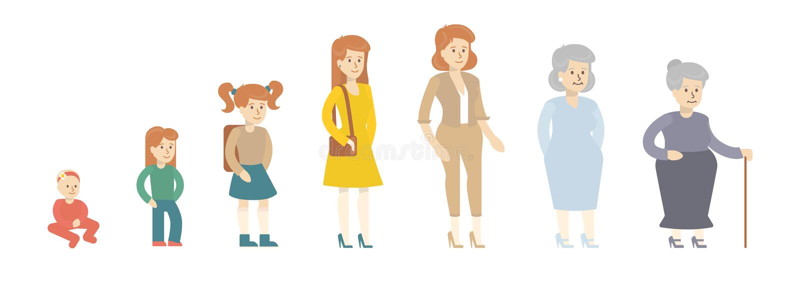 Évolution femelle d'âge illustration libre de droits