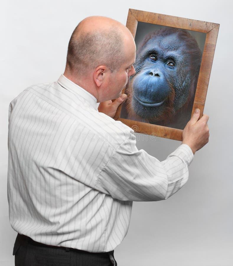 Évolution humaine. photographie stock