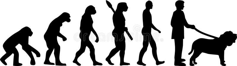 Évolution napolitaine de mastiff illustration de vecteur