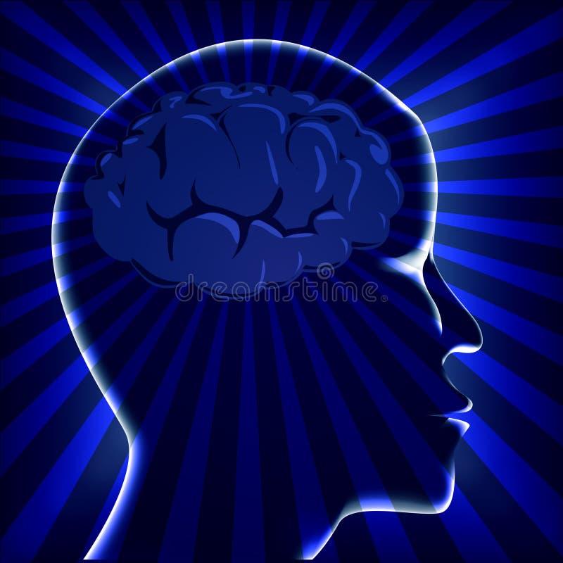 Être humain de cerveau d'illustration avec le rayon sur le virage illustration libre de droits