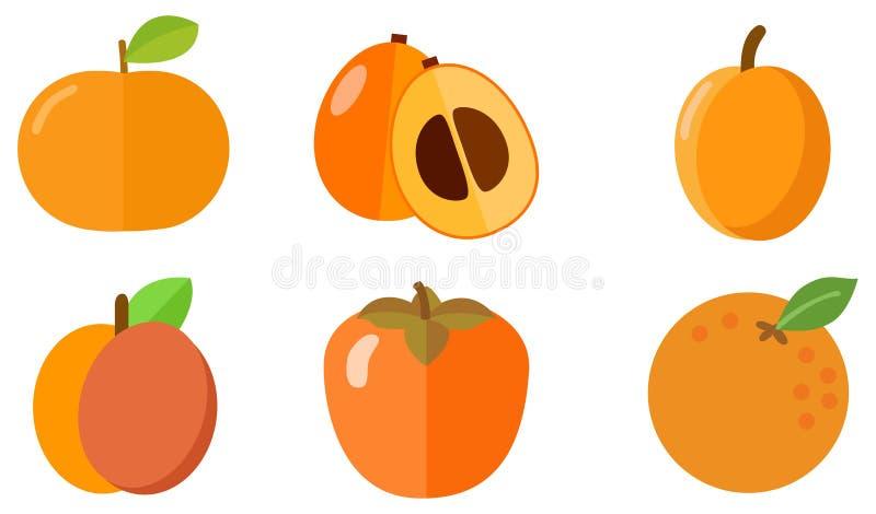 Ícone alaranjado da fruta ilustração stock