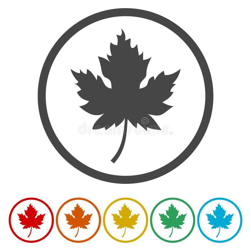 Ícone canadense do roundel da folha de bordo do vetor ilustração stock