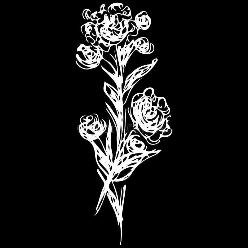Ícone cor-de-rosa à moda do esboço, grande projeto para algumas finalidades Ilustra??o isolada vetor Logotype luxuoso do vetor da ilustração royalty free