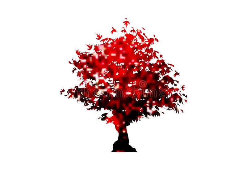 Ícone da árvore de bordo vermelho do vetor isolado no fundo branco Acer Palmatum, Deshojo, escarlate da árvore dos bonsais da pla ilustração do vetor