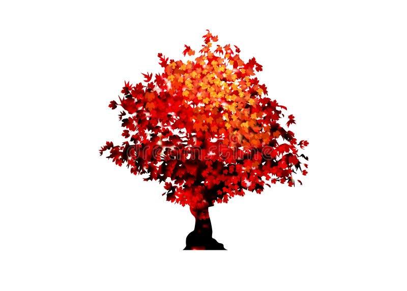 Ícone da árvore de bordo vermelho do vetor isolado no fundo branco Acer Palmatum, Deshojo, escarlate da árvore dos bonsais da pla ilustração royalty free