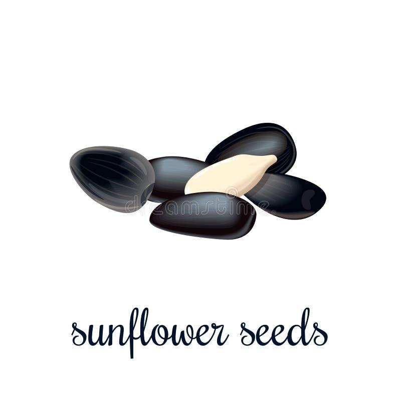 Ícone da cor das sementes de girassol no projeto dos desenhos animados ilustração stock