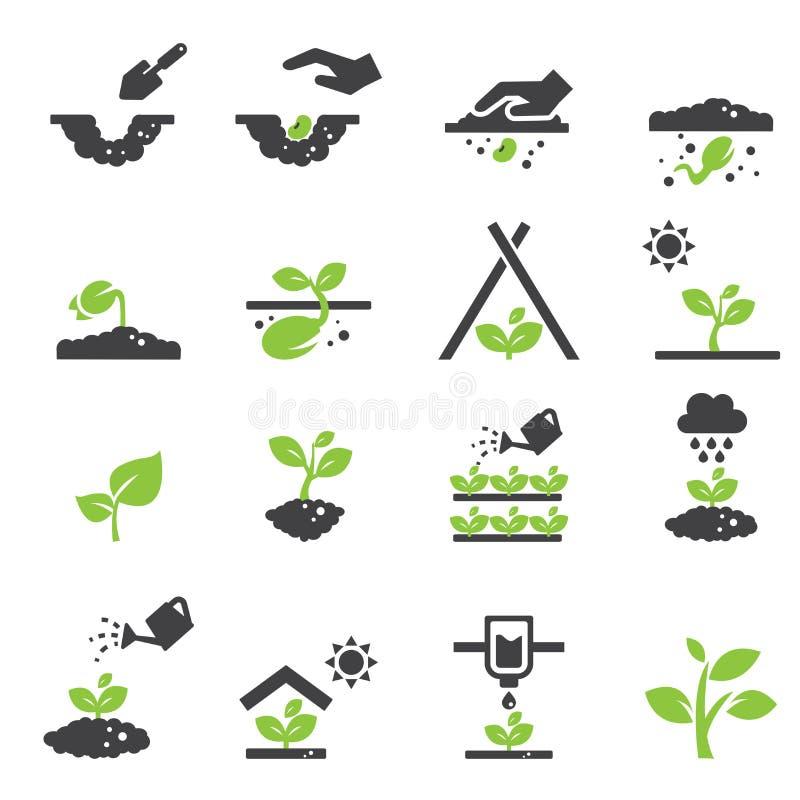 Ícone da planta ilustração do vetor