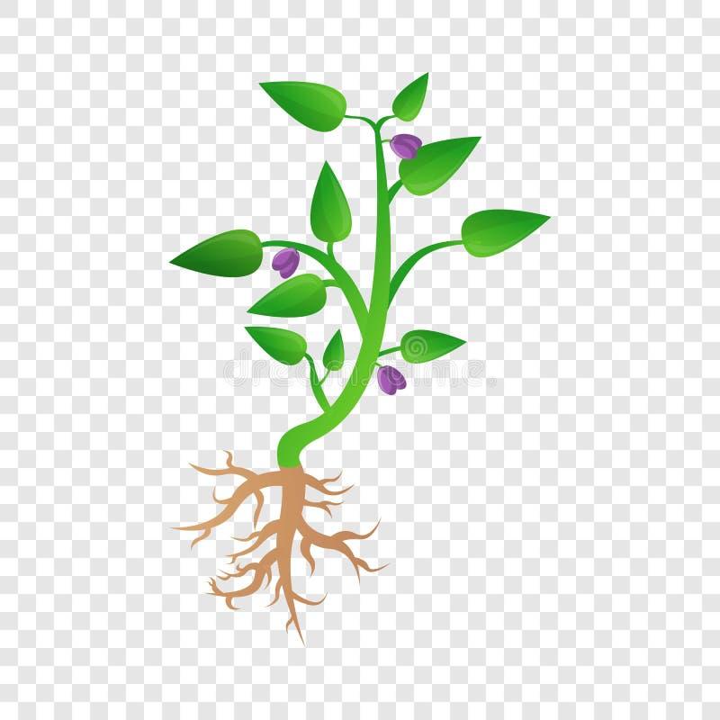 Ícone da planta de feijão de soja, estilo dos desenhos animados ilustração royalty free