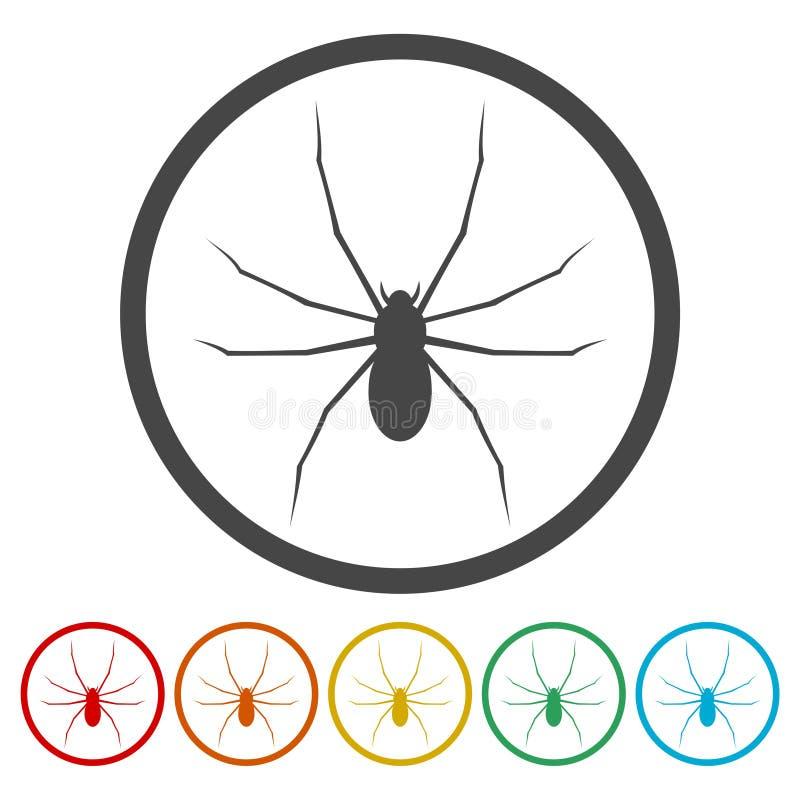 Ícone da Web de aranha Ilustração lisa do vetor do projeto ilustração do vetor