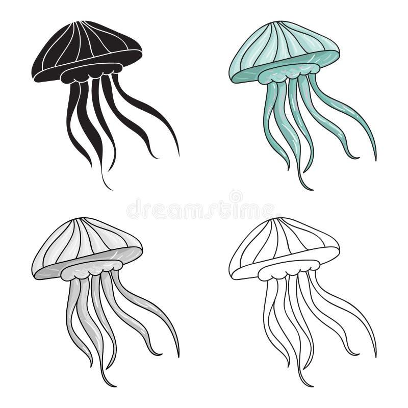 Ícone das medusas no estilo dos desenhos animados isolado no fundo branco Ilustração do vetor do estoque do símbolo dos animais d ilustração do vetor