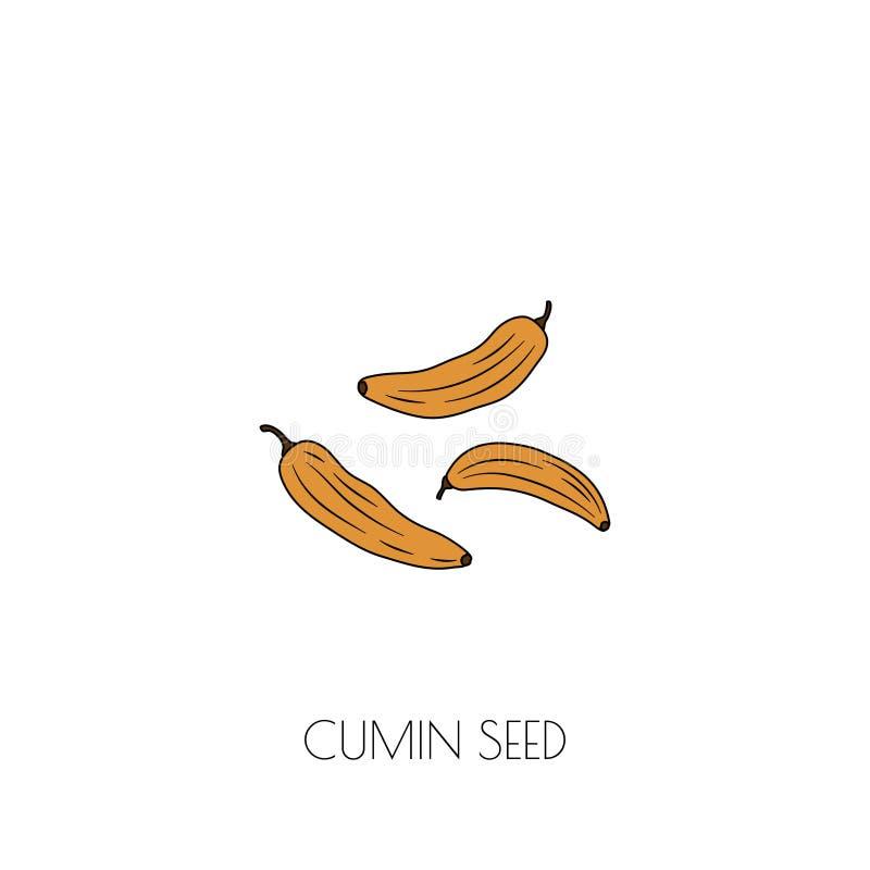 Ícone das sementes de cominhos ilustração stock