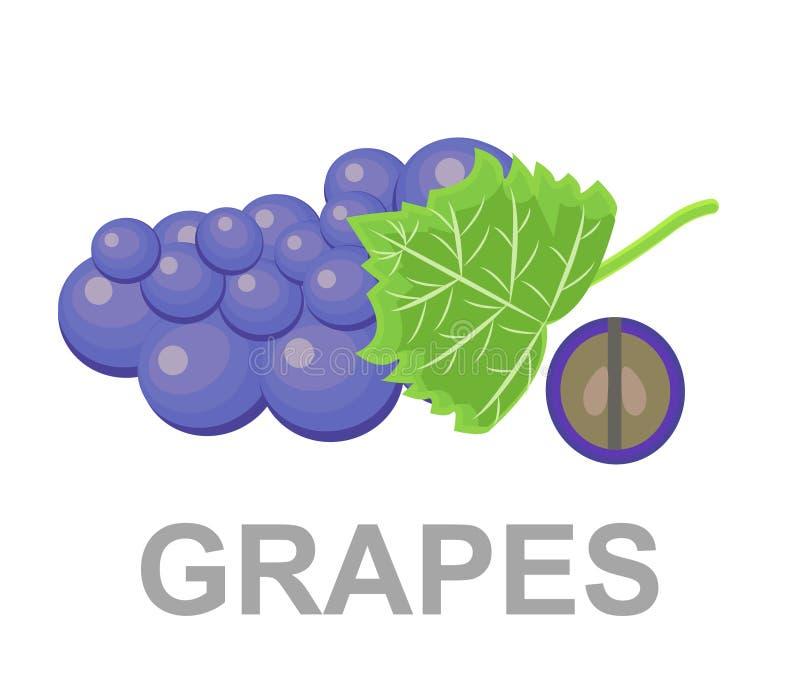 Ícone das uvas inteiramente e em um corte Ícone das uvas ilustração stock